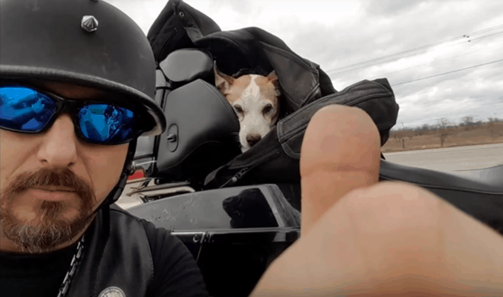 Biker Rescues A Puppy From Its Abusive Owner By Doing The Sweetest Thing